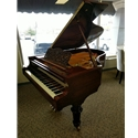 "Estonia 6'3"" Grand Piano Victorian Rosewood"