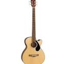 Fender CB-60SCE Acoustic/Electric Bass